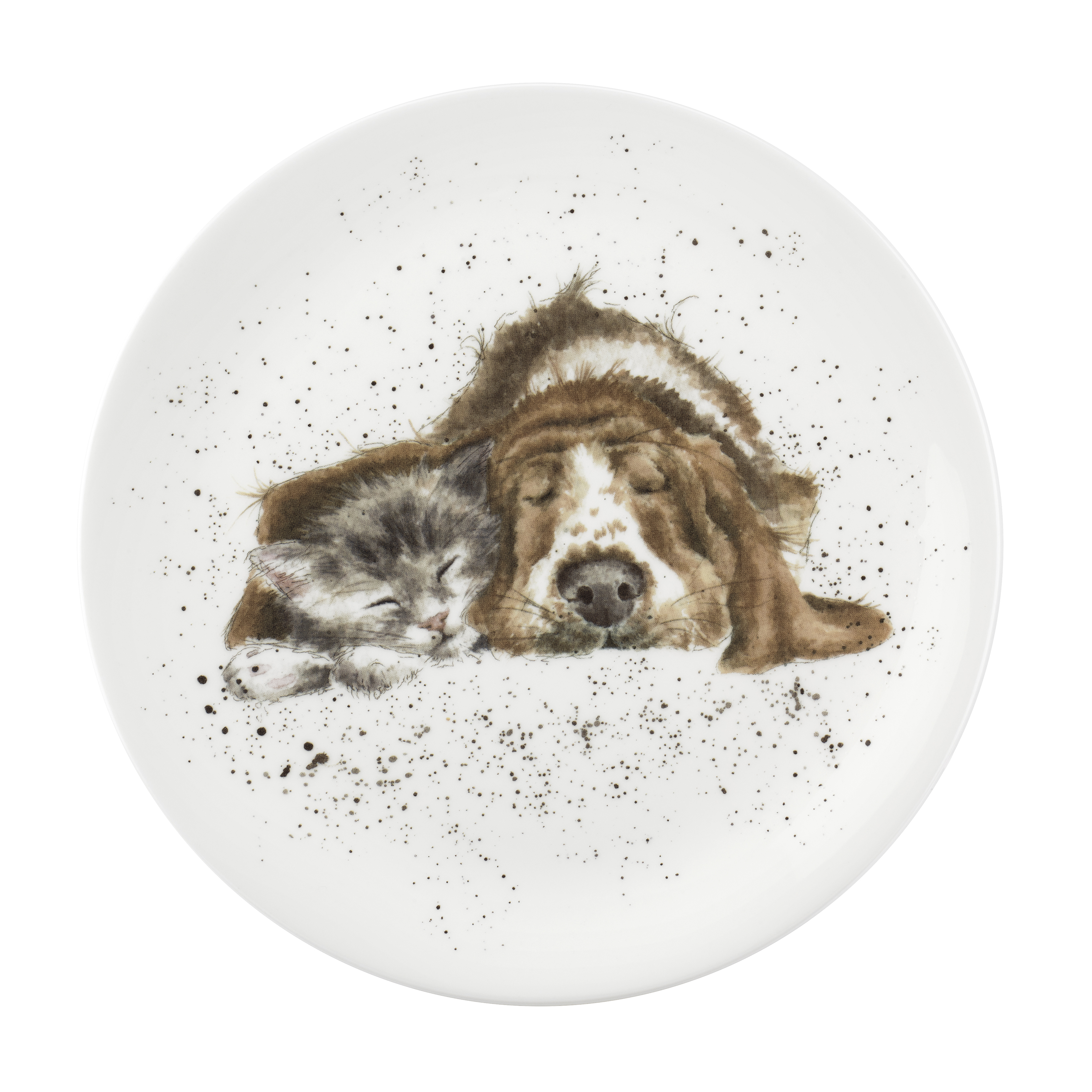 Royal Worcester Wrendale Designs Dog & Catnap 8 Inch Coupe Plate image number 0